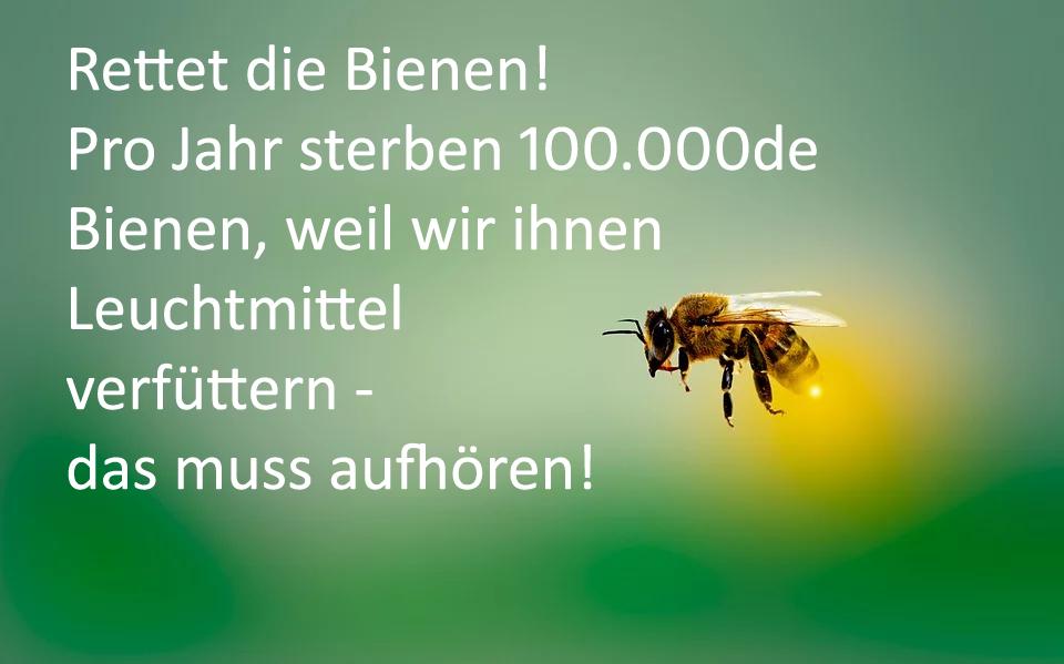 """Eine Biene, deren Hinterteil wie das eines Glühwürmchens leuchtet, fliegt vor grünem Hintergrund. Auf dem Bild steht: """"Rettet die Bienen! Pro Jahr sterben 100.000de Bienen, weil wir ihnen Leuchtmittel verfüttern - das muss aufhören!"""